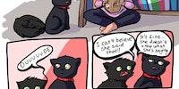 Meow meow your mom meow.