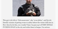 Meet the Swan Father