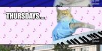 Cats' week in Timeline.