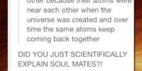 Understanding soul mates.