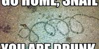 Go home, snail.