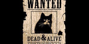 Wanted: Dead and Alive.