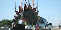 Just a Stegosaurus in a pickup