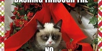 Happy Holidays from Grumpy Cat.
