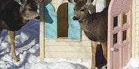 Deer-est