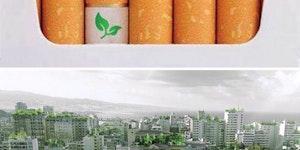 Biodegradable cigarette filters