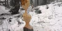 Beaver art