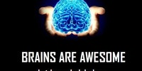 Brains are awesome.