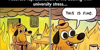 Dealing with college stress.