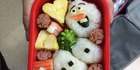 Do you wanna build a bento box?