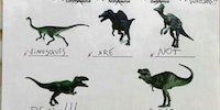 Identify the dinosaurs!