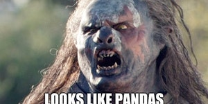 My reaction after hearing Pandas are no longer endangered.