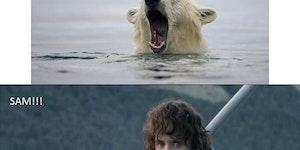 Go back, Sam. I'm going to Mordor alone.