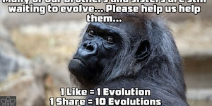 We are waiting to evolve.