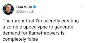 Elon Musk - Zombie Defender.