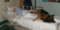 This hospital lets a sick boy's dog in to give him unconditional comfort.
