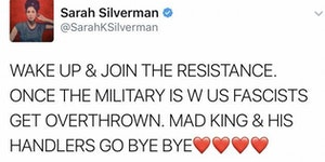 Sarah Silverman publicly calling for military coup. Violation of U.S. Code 2385.