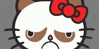 Hello (grumpy) Kitty.