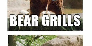 Bears Grilled