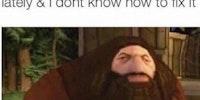 PS1 Hagrid vibes