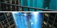 The AquaDom.