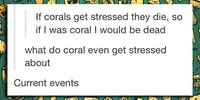 If corals get stressed, they die.