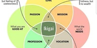 Ikigai is life.