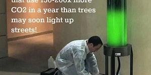 Algae lamps.