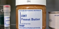 peanut butter can be purchased directly from usa.gov