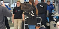 The TSA is gonna take away your freedom