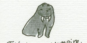 The walrus.
