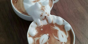When coffee foam attacks!