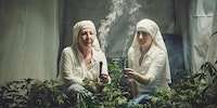 Weed farming nuns look like an accidental renaissance painting