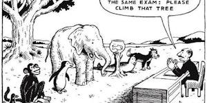 How standardized testing works.