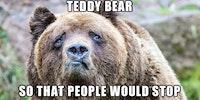 Depression Bear