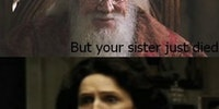 Dumbledore just met you...