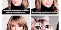 Taylor Swift's favorite meme is the heavy breathing cat