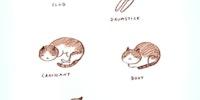 Cat Charades.