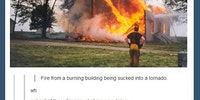 Fire tornado. huh.