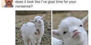 You Tell Them, Goat