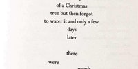 A very Christmas poem.
