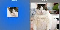Facebook is deceiving.