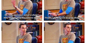 Sheldon explaining fandom life.
