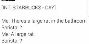 Grande rodents