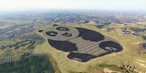 World's Cutest Solar Farm in China