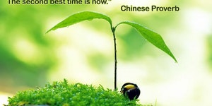 The best time to plant a tree.