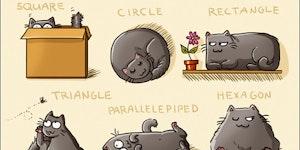 The basics of cat geometry.