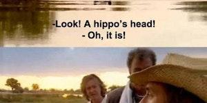 Look! A hippo's head!