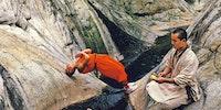 Shaolin monks training.