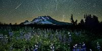 The Perseid meteor shower over Mt. Hood